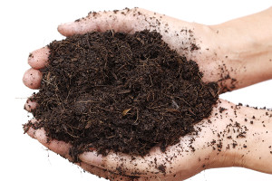 Choosing the Compost Method that is Best for You